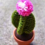 amigurumi cactus - free crochet pattern - besenseless.Traveller Location  Handarbeit, Muster,