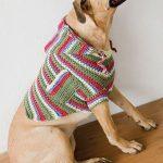 free dog sweater crochet pattern- www.Traveller Location   dog sweaters    Häkeln, Stricken, Hunde pullover