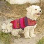 Hundepullis selber stricken Hundeponcho - Traveller Location