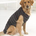 Hundepullover stricken mit Zopfmuster