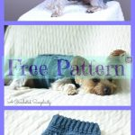 10 Cozy Crocheted Dog Sweater Free Patterns