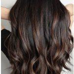 24 Schwarzes Haar mit Highlights, die Sie ausprobieren müssen -
