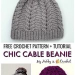 4 Braided Cable Beanie Hat Free Crochet Pattern