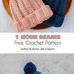 Beanies in Under an Hour Free Crochet Patterns