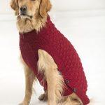 Clifford Dog Sweater pattern by Lion Brand Yarn