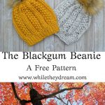 Knitting Patterns for Beginners Knitting Patterns Knit Gifts Knit Ideas Easy Knit Hat Free Knitting Knit Hat Pattern Knit Hats How to Knit a Hat Knit Hat Ideas K...
