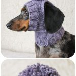 Pom-Pom Dog Hat