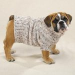 The Big List of Free Dog Knitting Patterns - Dog Knits for Pooches with Style