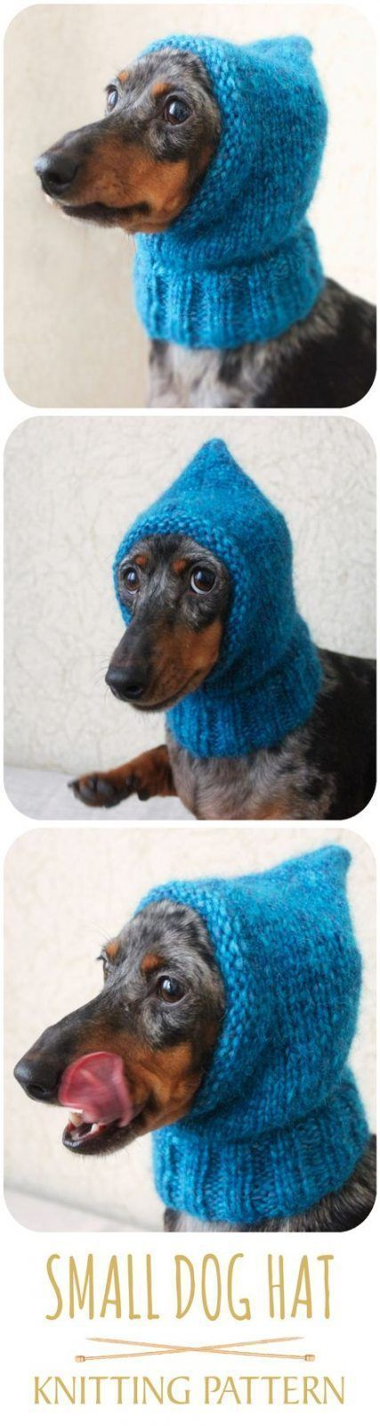 Wonderful Cost-Free Crochet Hat dog Suggestions Beanies will be the bad thing as…