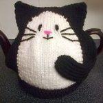 hand knitted black cat tea cosy...ebay