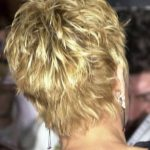 sharon stone short shag from the back | ... sharon stone showing back of hair | ...